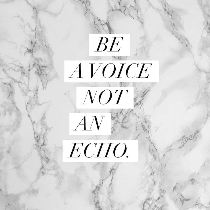 Be-A-Voice-Not-An-Echo-Vivi-Brizuela-PinkOrchidMakeup