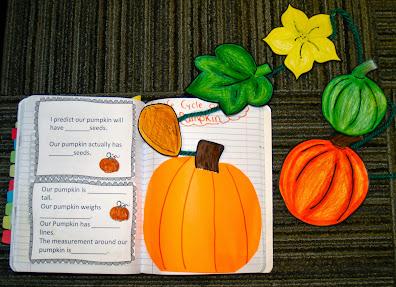 Pumpkin Activities Third Grade