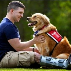 U.S. Army: Dogs Help Battle PTSD