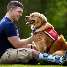 U.S. Army: Dogs Help Battle PTSD