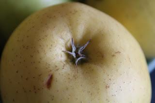 Índice glicémico (IG) nos alimentos (aveia, arroz, frutas...)