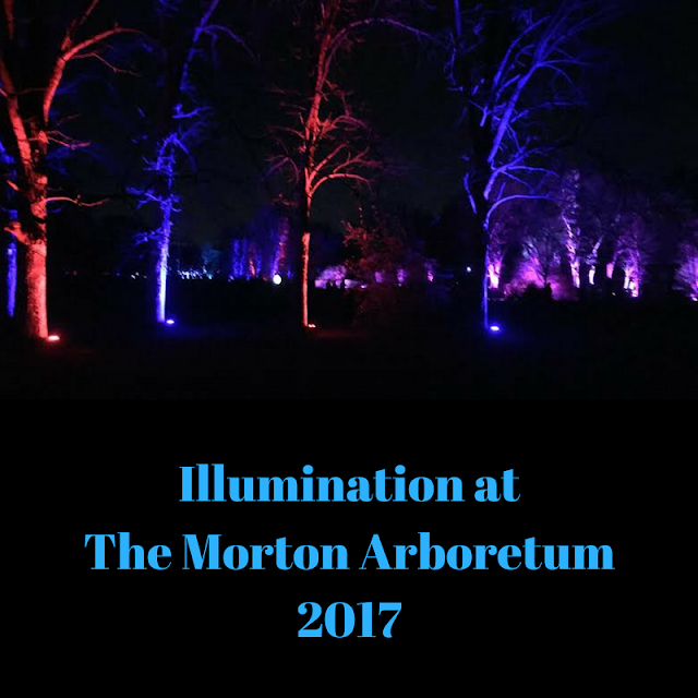 Illumination at The Morton Arboretum 2017