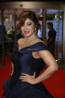 Payal Ghosh aka Harika in Dark Blue Deep Neck Sleeveless Gown at 64th Jio Filmfare Awards South 2017 ~  Exclusive 151.JPG