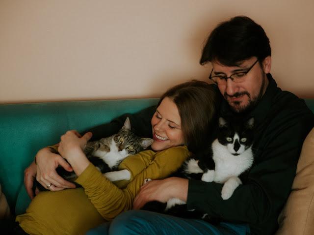 koty a ciąża - Warsztat Spojrzeń