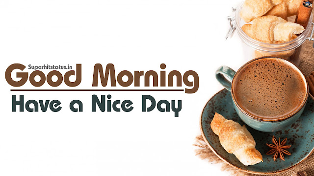 Good Morning Images Wallpapars Photo Cool Download