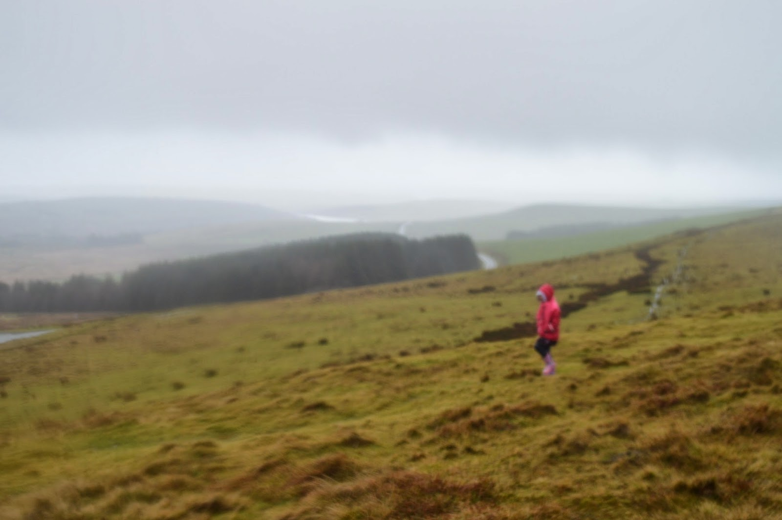 , The Preseli Mountains #Pembrokeshire #CountryKids