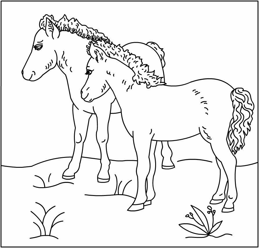 - Horse Coloring Pages Printable