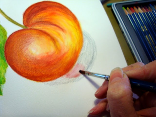 Dion Dior Art & Illustration: New Class & Giveaway ...