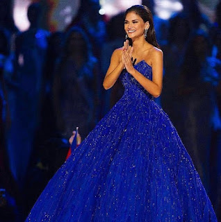 Miss Universe Contestants Shattered the Pageant Dress Stereotype