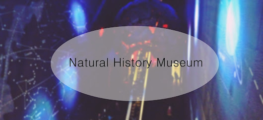 Leaving Routine: Natural History Museum