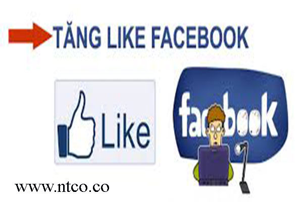 Tai sao can tang like tren facebok