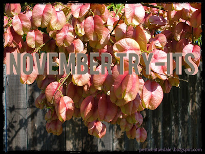 Image of tree foliage that fades from pink to yellow.  Text reads: November Try-its.