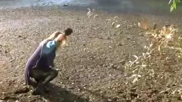 """Η λίμνη της Καστοριάς """"κατάπιε"""" δημοσιογράφο σε ζωντανή σύνδεση (video)"""