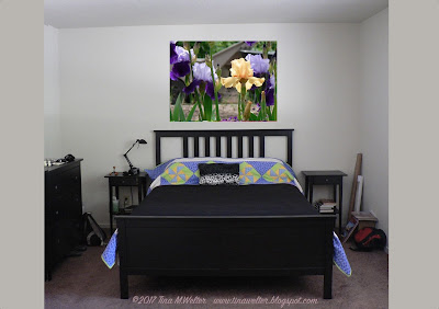 Stand Out, photograph peach iris ©2016 Tina M.Welter, painting idea for the bedroom