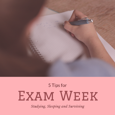 5 Tips to Survive Exam Week