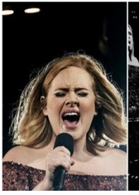 Adele suffers damaged vocal cords, cancels her concerts