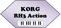 Korg RH3 action pic