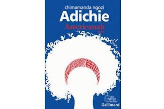 Lundi Librairie : Americanah - Chimamanda Ngozi Adichie
