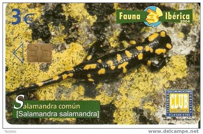 Tarjeta telefónica Salamandra común (Salamandra salamandra)