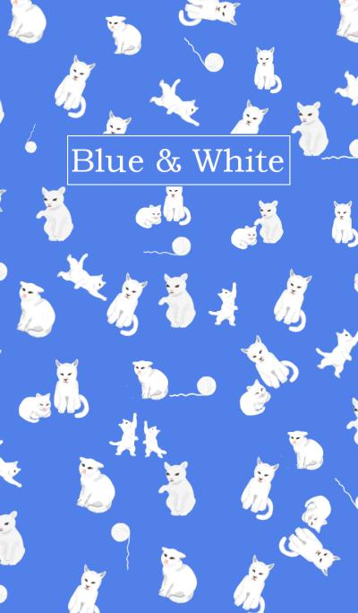 Blue White Color 01