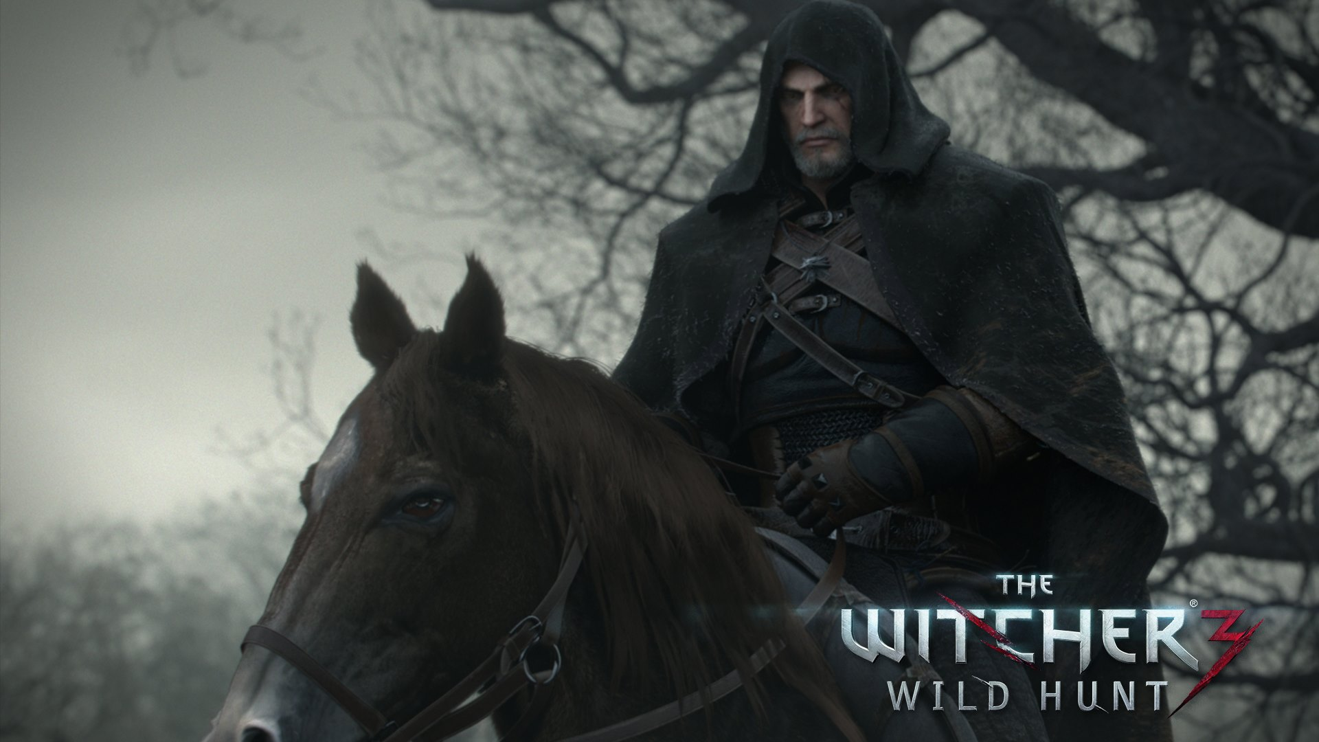 the witcher 3 wild hunt wallpaper hd wallpapers