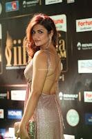 Telugu Actress Aarthi in Deep Neck Backless Golden Gown at IIFA Utsavam Awards 2017 Exclusive 02.JPG