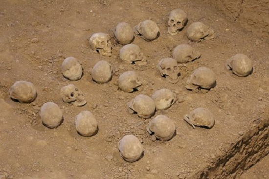 3,000-year-old human skulls from China show traces of early craniotomy