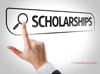 MENA Scholarship Programme (MSP) for Professionals from Middle East and North Africa