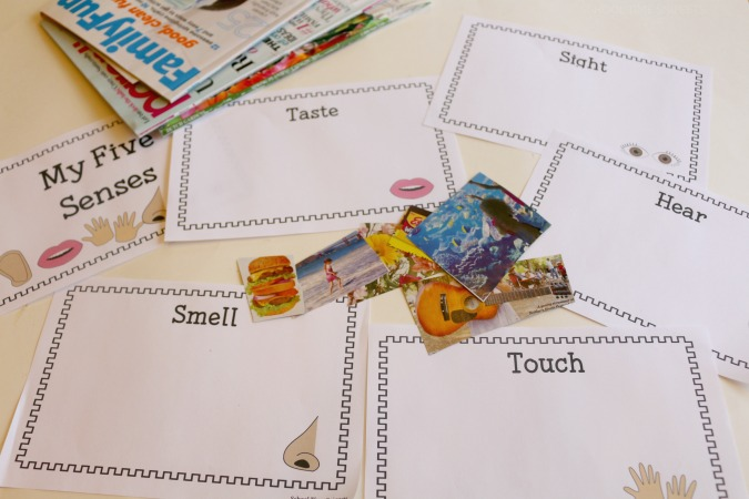 5 senses booklet for preschoolers