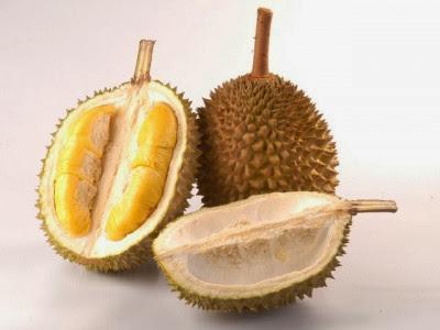 Kita semua tentunya tidak absurd lagi dengan  Manfaat Buah Durian Untuk Kesehatan