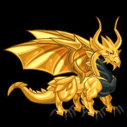 Dragón Oro (Adulto)