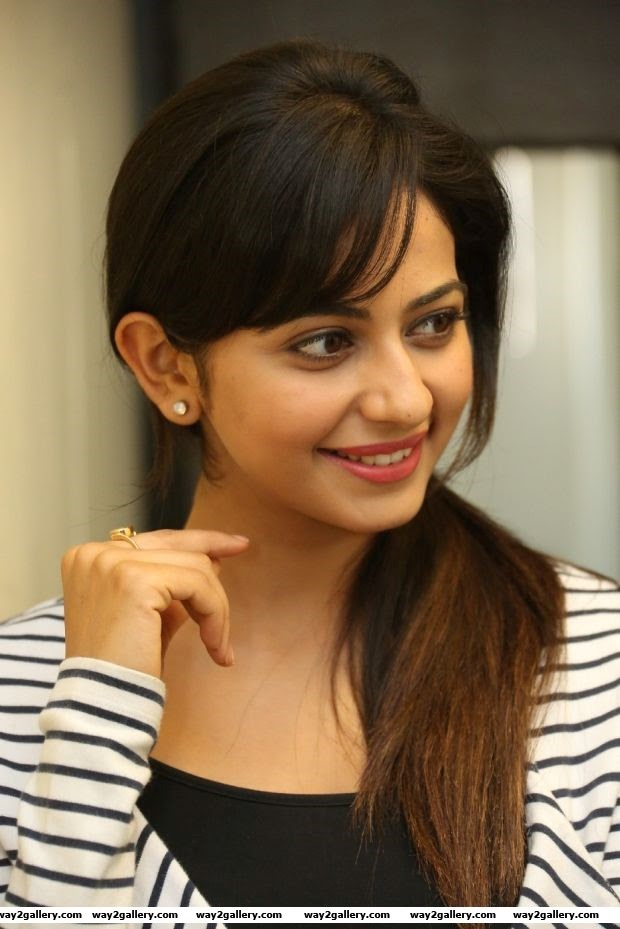 rakul preet singh photo gallery and rakul preet singh spicy gallery 6