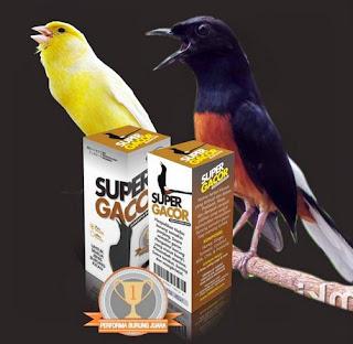 Kisaran Daftar Harga Vitamin Burung Kicau Terbaru Saat Ini 2017 Paling Lengkap