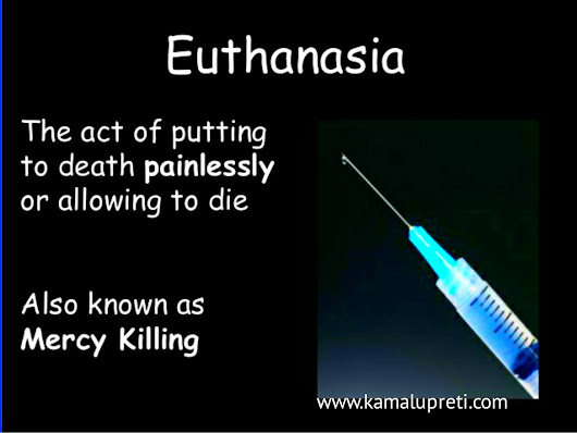 euthanasia painless death essay Literally, good death the dictionary describes euthanasia as a quiet and easy death, the means of procuring this or, the action of inducing a quiet and easy death  euthanasia has a becomes a legal, medical, and ethical issue over which opinions are divided.