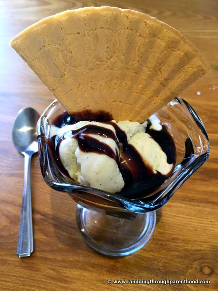 Vanilla ice-cream with chocolate sauce and a wafer