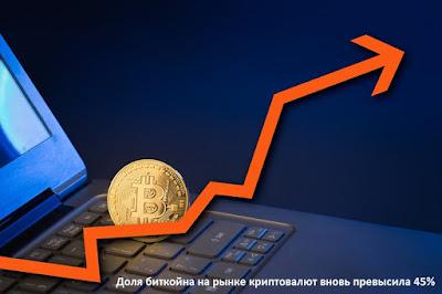 Доля биткойна на рынке криптовалют вновь превысила 45%