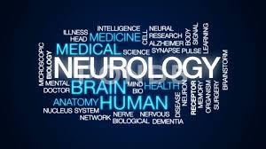 neurology-www.healthnote25.com