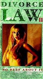 Divorce Law (1993) Illegal Affairs