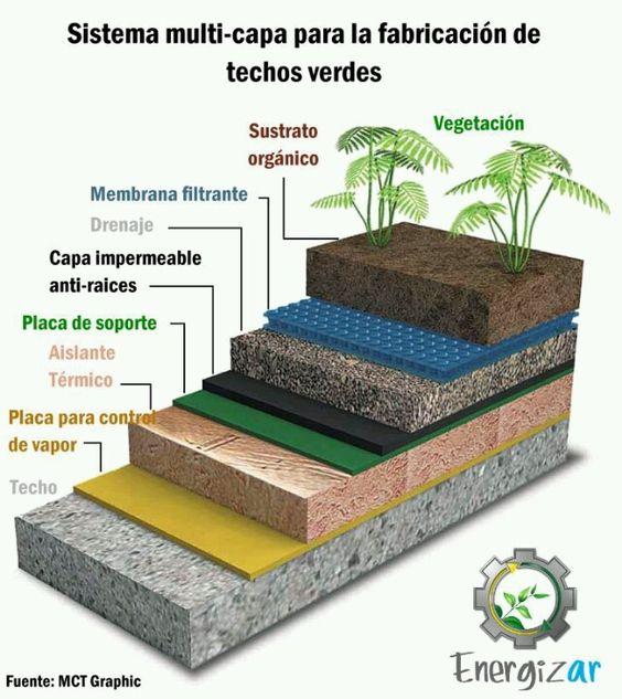 Qu Es Un Techo Verde De Arkitectura