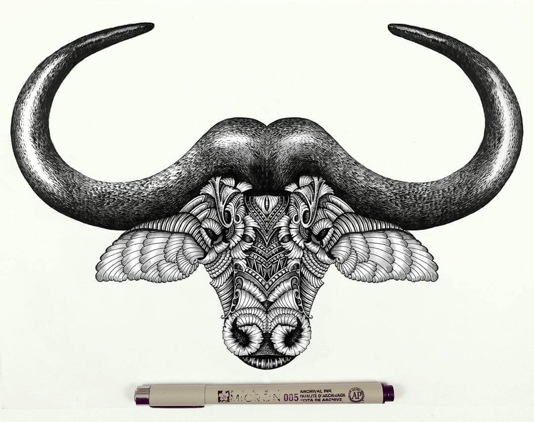 12-Buffalo-Faye-Halliday-Animals-with-Zentangle-Detailing-www-designstack-co