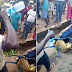 In Owerri, Man caught spraying urine in the Cucumber he sells, and this happened (photos)