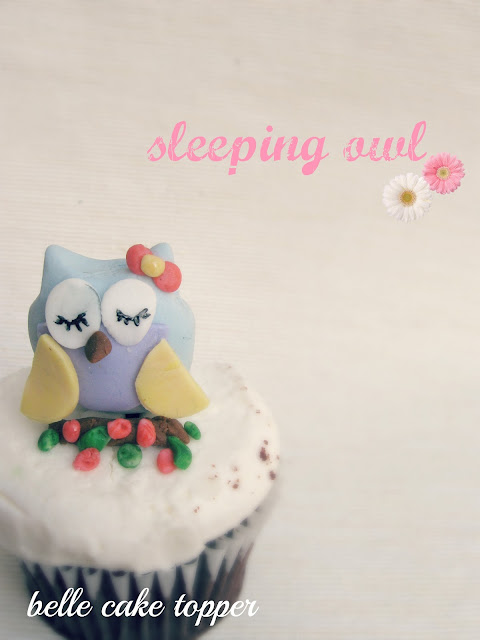 Belle Cake Topper And Mould Sleeping Owl