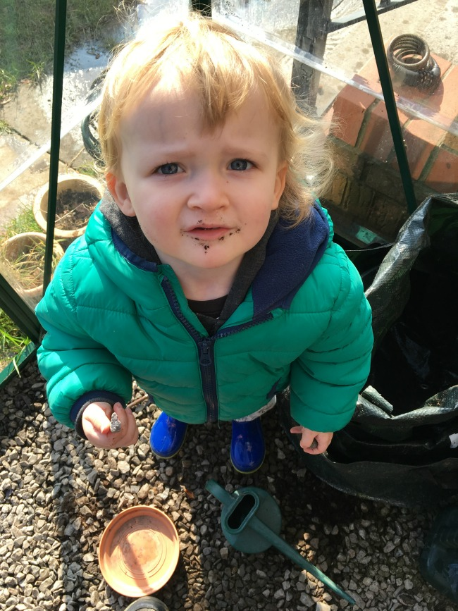 How-to-Sow-Seeds-for-Absolute-Beginners-image-of-toddler-with-compost-around-his-mouth