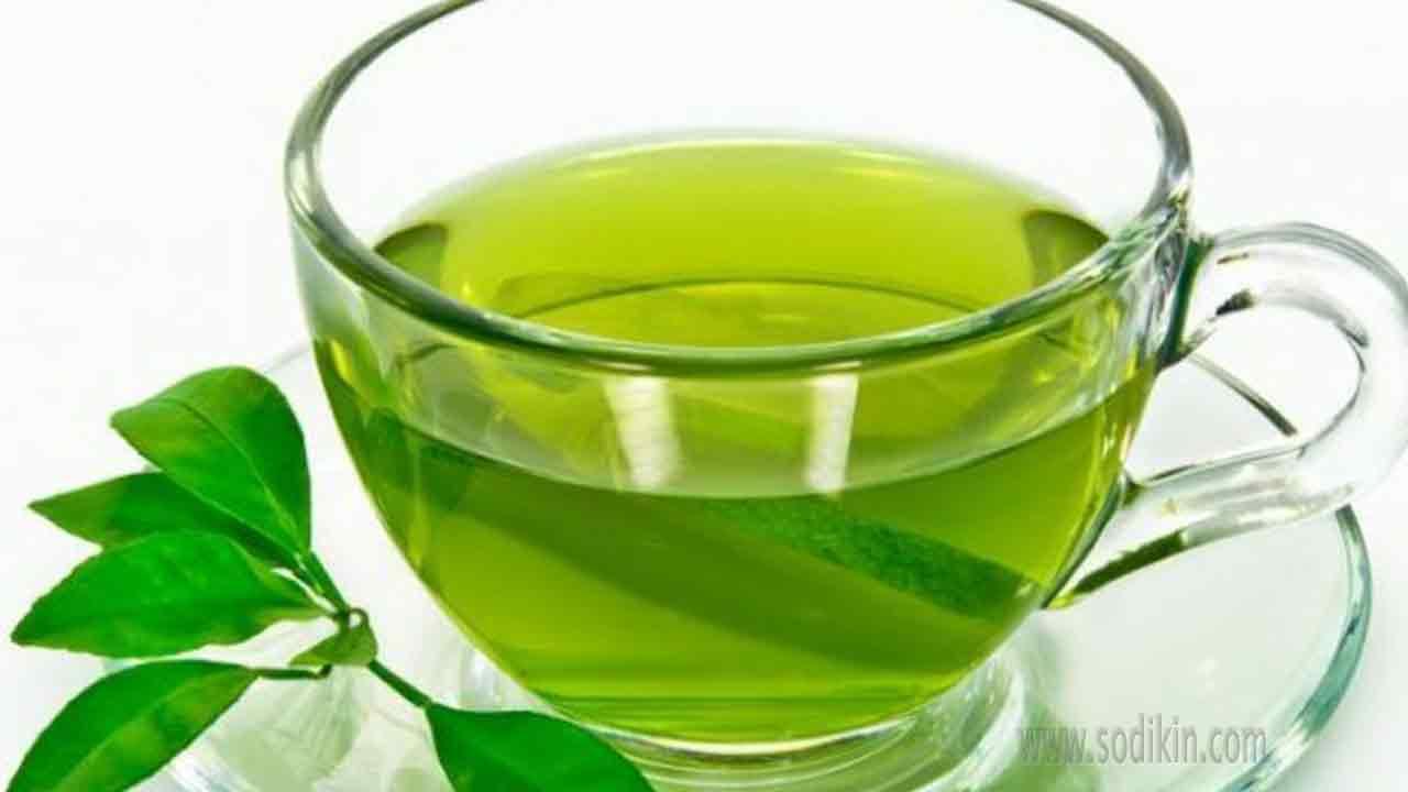 teh-hijau-dan-manfaatnya-bagi-kesehatan
