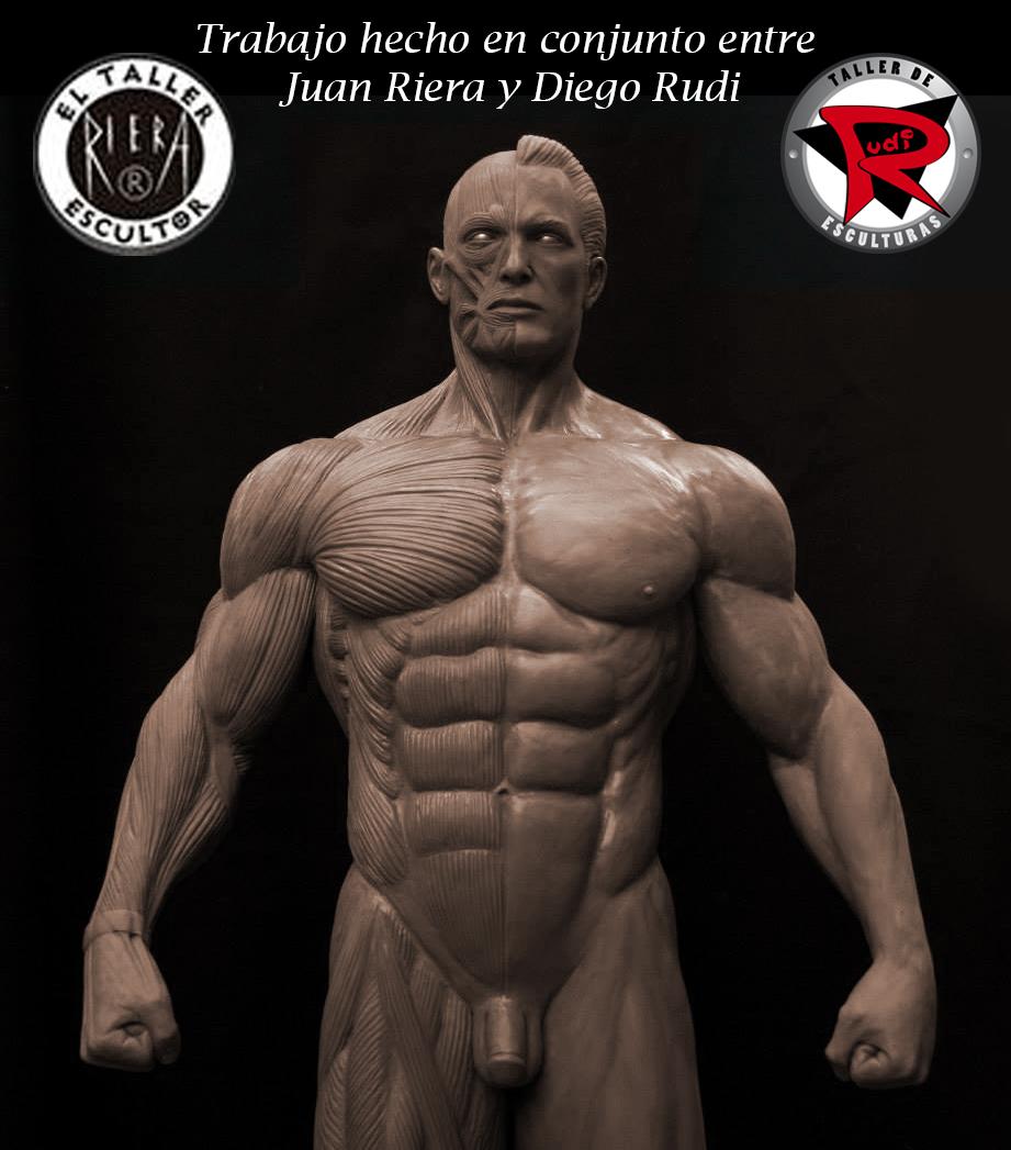 Diego Rudi Esculturas: Modelo de anatomia