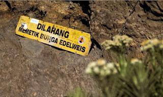 Hal-hal yang dilarang buat traveler