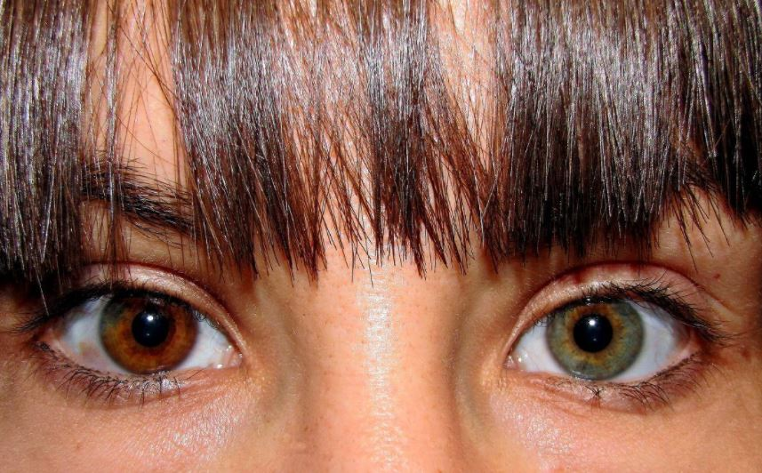 Bolduc Eye Care Group Blog