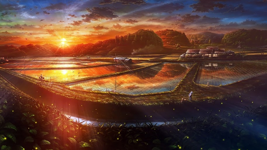 Sunset, Paddy Field, Nature, Scenery, Landscape, Anime, 4K, #109
