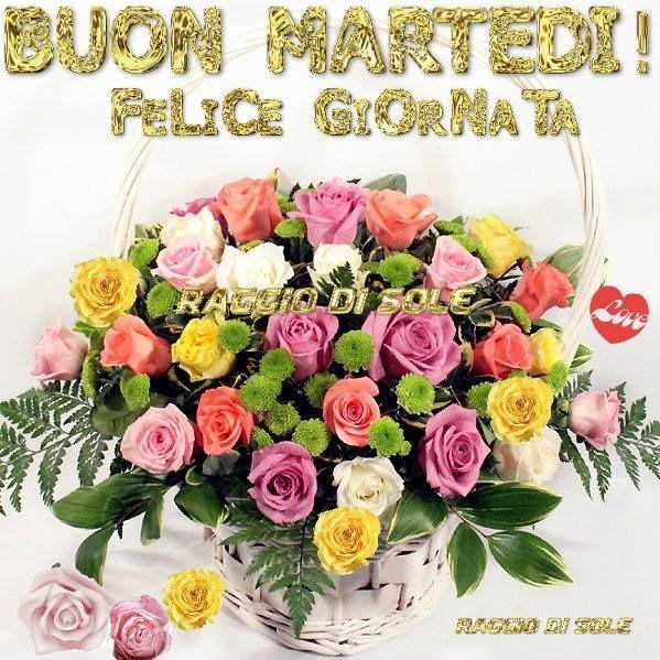 Maria Elena Boschi E Fredda Lacqua Di Formentera furthermore 999 likewise Id133858 together with Internazionale De Milao together with Zlatan Ibrahimovi C4 87. on 2010 milan