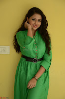 Geethanjali in Green Dress at Mixture Potlam Movie Pressmeet March 2017 013.JPG
